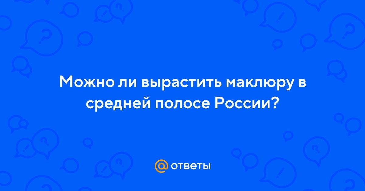 можно ли вырастить баобаб в россии